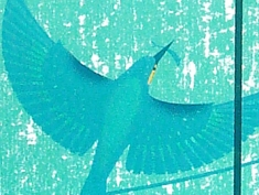 Kingfisher silkscreen print