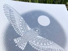 silvergoccoowl1