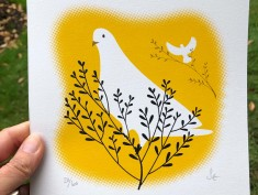white dove yellow