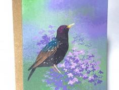 Starling card2