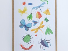bugscard envelope2