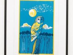 owl inframe1