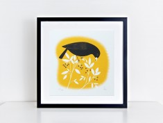 yellow bbird frame