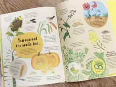 Usborne: It All Starts with a Seed-seeds