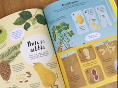Usborne: It All Starts with a Seed - Nuts